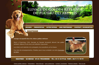 Golden-azzopardi.fr - Chiot golden retriever en Dordogne (24) : Azzopardi