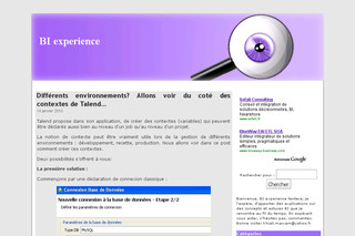 BI experience - Infodecisionnel.com