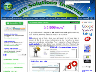 Tarn Solutions Internet - Référencement manuel - Tarn-solutions-internet.fr