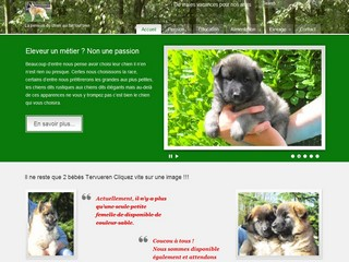 Pension chien 78 - Yvelines - Pensionduchien.com