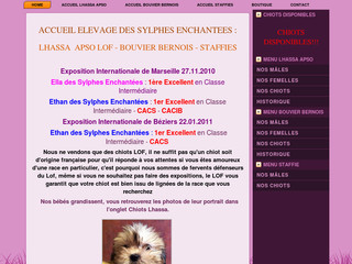 Edse.fr - Site Officiel chiots de France