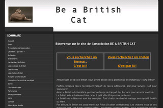 Be a British Cat - Chats-british-shorthair.com