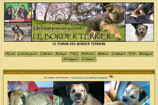 Le forum des Border Terriers - Borderterriers.xooit.fr